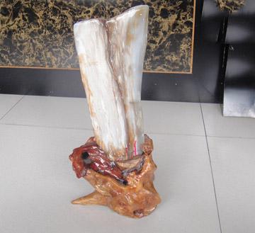 缅甸硅化木-木化石-树化玉镇宅摆件