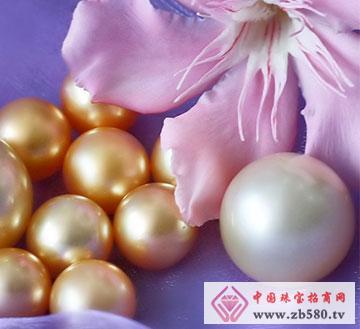 单颗粒白色珍珠