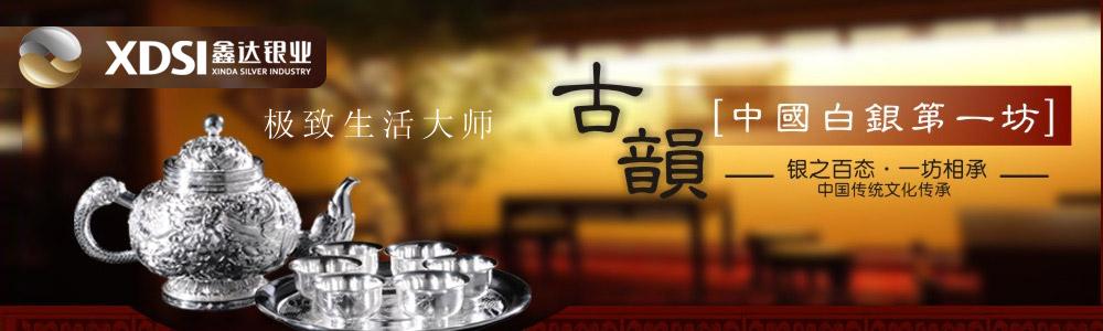 湖南鑫达银业股份有限公司