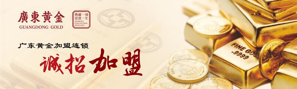 广东省黄金集团有限责任公司
