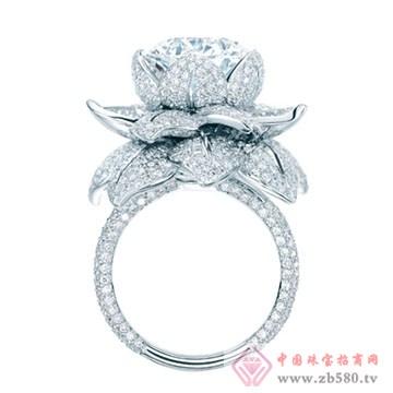 宝诗澜-钻石04