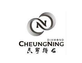 深圳市长宁钻石股份有限公司