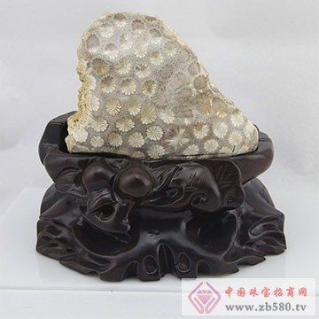 石可人珊瑚玉3