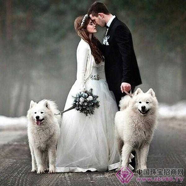 婚庆珠宝专题 婚爱世界     宠物有可爱萌翻天的,当然也可以有威武有