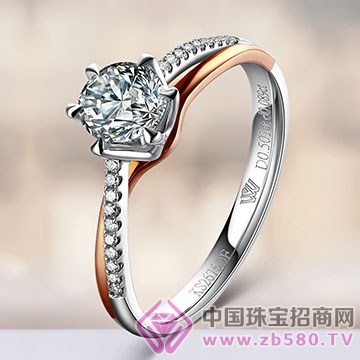 王老五钻石-钻石戒指【吾爱】