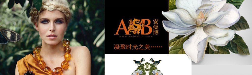 安曼博珠寶控股有限公司