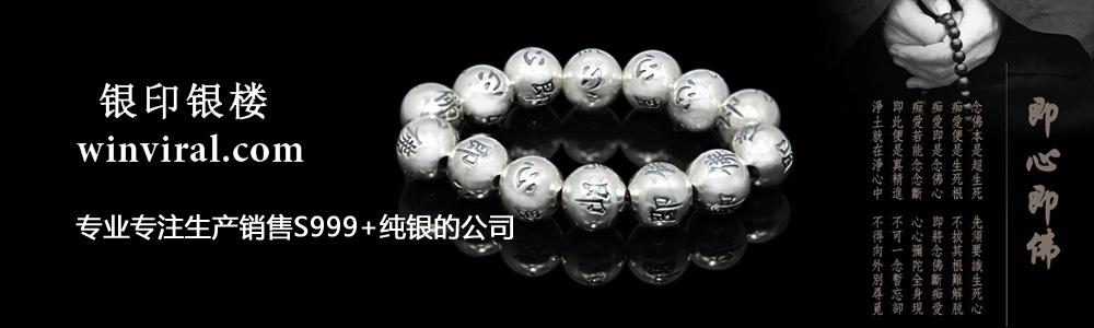 广东银印投资