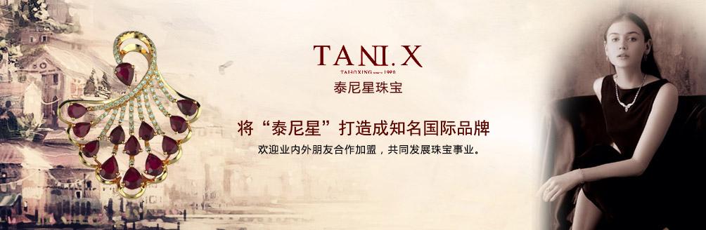 深圳泰尼星实业发展有限公司