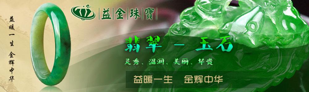 深圳市益金珠宝有限公司