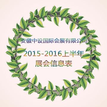 安徽中设国际会展有限公司2015年-2