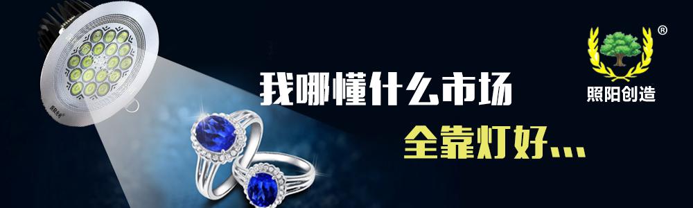 深圳市照阳电子科技有限公司