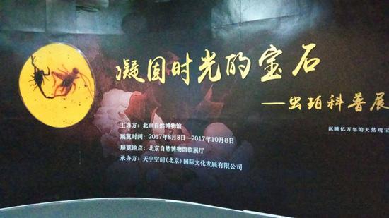"""""""凝固时光的宝石——虫珀科普展"""",中国湿地博物馆"""