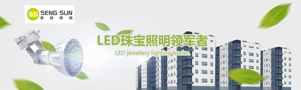深圳市昇辉照明有限公司